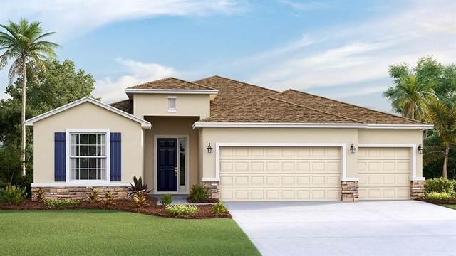 17008 Harvest Moon Way, Bradenton, FL 34211 (MLS #T3337153) :: Keller Williams Suncoast