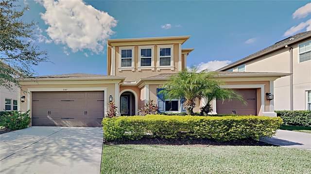 7187 Bay Laurel Court, Wesley Chapel, FL 33545 (MLS #T3337293) :: Future Home Realty