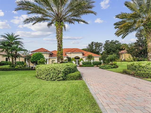 12911 Tradition Drive, Dade City, FL 33525 (MLS #T3337305) :: Everlane Realty