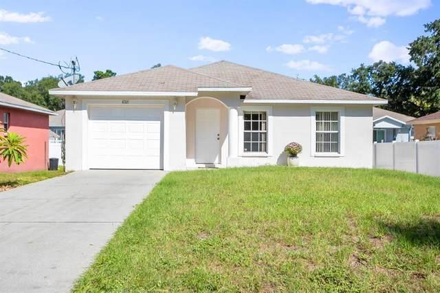 8521 Patsy Street, Tampa, FL 33615 (MLS #T3337314) :: Stellar Home Sales