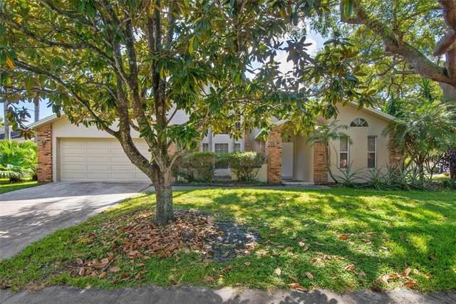 30 Water Oak Way, Oldsmar, FL 34677 (MLS #T3337365) :: Everlane Realty
