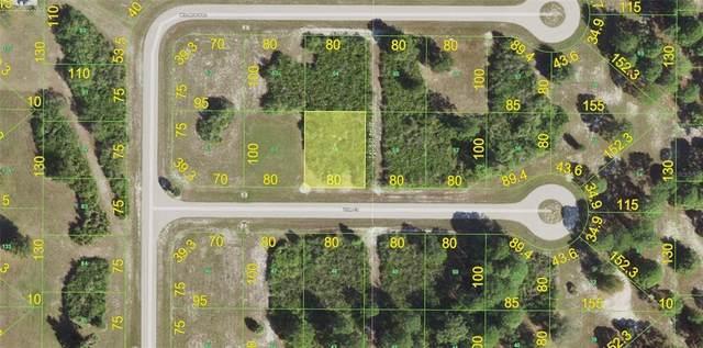 6 Trim Court, Placida, FL 33946 (MLS #T3337384) :: Engel & Volkers