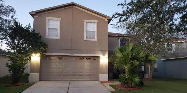 30853 Sonnet Glen Drive, Wesley Chapel, FL 33543 (MLS #T3337398) :: Future Home Realty