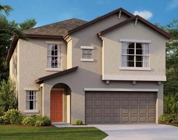 10211 Cool Waterlily Avenue, Riverview, FL 33578 (MLS #T3337418) :: The Posada Group at Keller Williams Elite Partners III