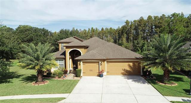 4857 Diamonds Palm Loop, Wesley Chapel, FL 33543 (MLS #T3337463) :: Future Home Realty