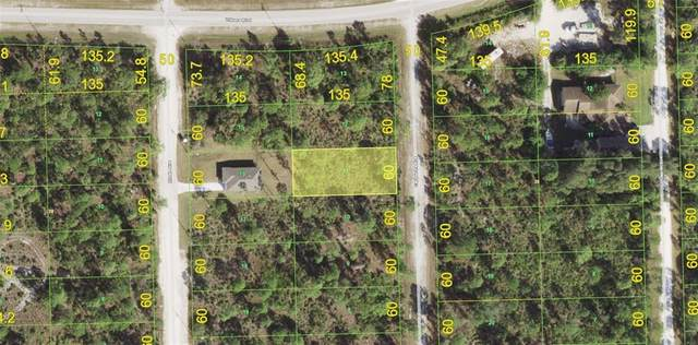 12285 Cartouche Avenue, Punta Gorda, FL 33955 (MLS #T3337534) :: McConnell and Associates
