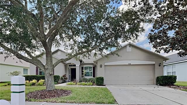 5305 Villagebrook Drive, Wesley Chapel, FL 33544 (MLS #T3337581) :: Future Home Realty