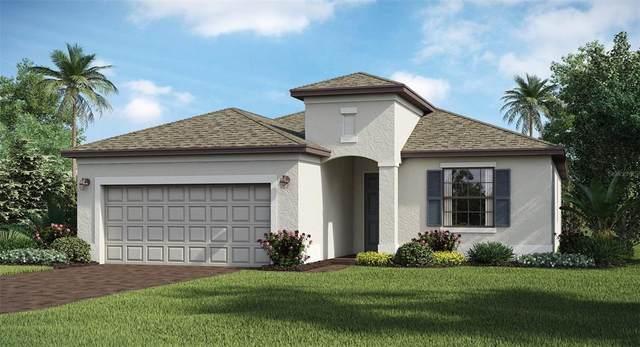 15969 Honeysuckle Street, Port Charlotte, FL 33953 (MLS #T3337622) :: Century 21 Professional Group