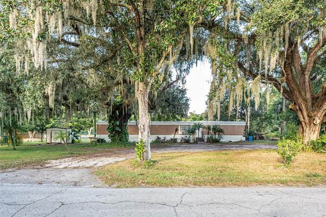 3241 S Forbes Road, Dover, FL 33527 (MLS #T3337731) :: Orlando Homes Finder Team