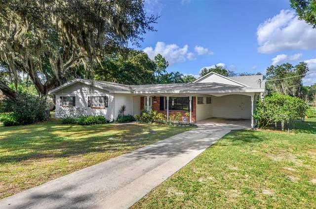 1302 Holiday Drive, Brandon, FL 33510 (MLS #T3337824) :: Orlando Homes Finder Team