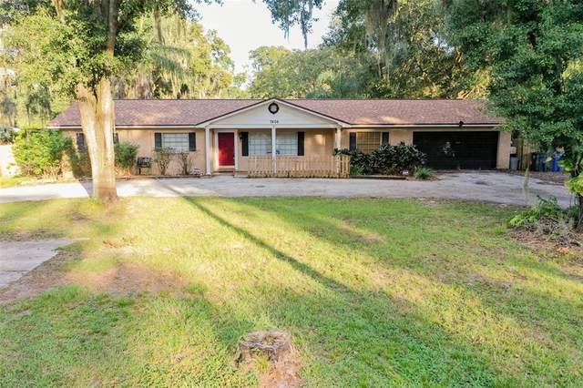7406 Turkey Creek Road, Plant City, FL 33567 (MLS #T3337872) :: Orlando Homes Finder Team