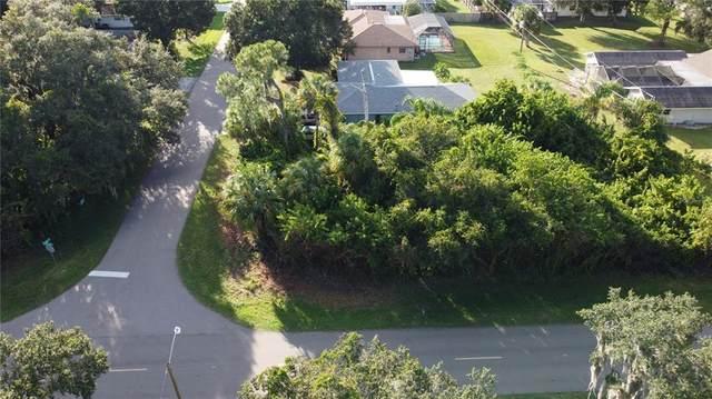 1433 Stamford Street, Port Charlotte, FL 33952 (MLS #T3337902) :: The Deal Estate Team | Bright Realty
