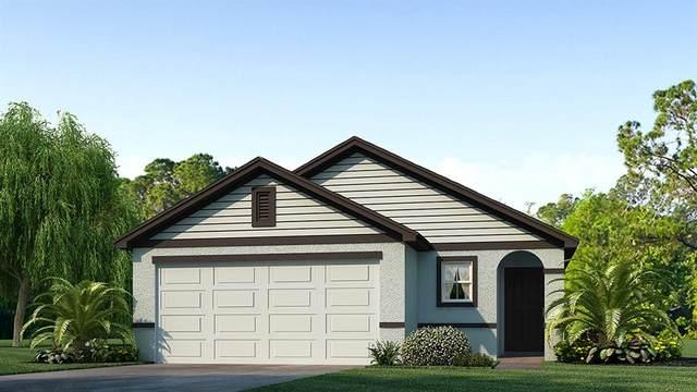 12156 Lily Magnolia Lane, Riverview, FL 33579 (MLS #T3338047) :: Orlando Homes Finder Team