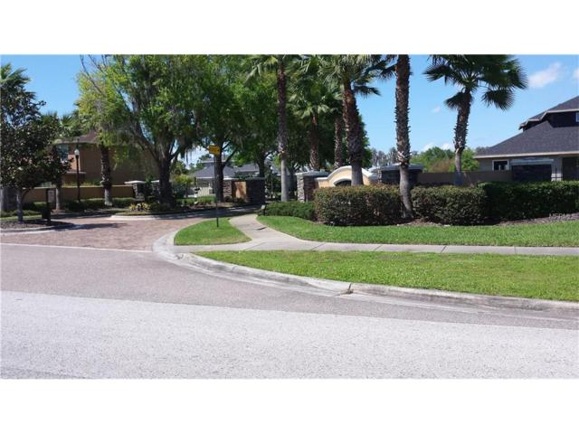 21206 Ski Way, Land O Lakes, FL 34638 (MLS #U7789900) :: Mark and Joni Coulter | Better Homes and Gardens