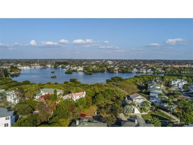 0 Sanctuary Drive, Crystal Beach, FL 34681 (MLS #U7807583) :: Chenault Group
