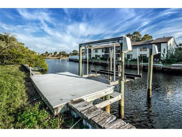 214 Manatee Lane Lane, Tarpon Springs, FL 34689 (MLS #U7808032) :: G World Properties