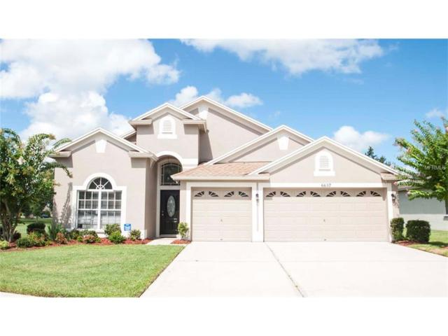 6637 Pine Springs Drive, Wesley Chapel, FL 33545 (MLS #U7812103) :: The Duncan Duo & Associates