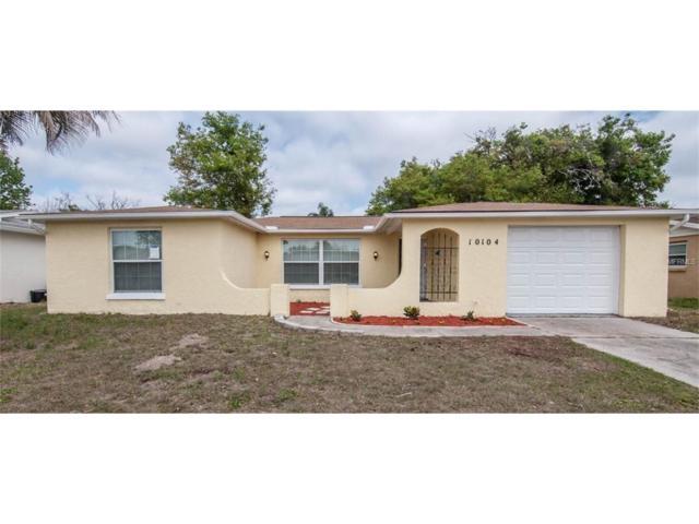 10104 Vineyard Lane, Port Richey, FL 34668 (MLS #U7812646) :: The Duncan Duo & Associates