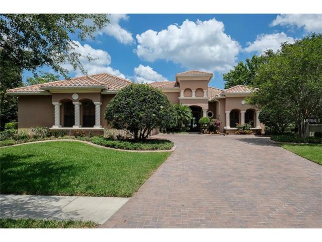 1068 Skye Lane, Palm Harbor, FL 34683 (MLS #U7819968) :: Delgado Home Team at Keller Williams