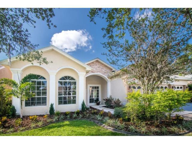10105 Bennington Drive, Tampa, FL 33626 (MLS #U7820166) :: The Duncan Duo & Associates