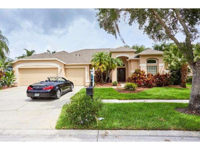 10325 Millport Drive, Tampa, FL 33626 (MLS #U7820316) :: The Duncan Duo & Associates