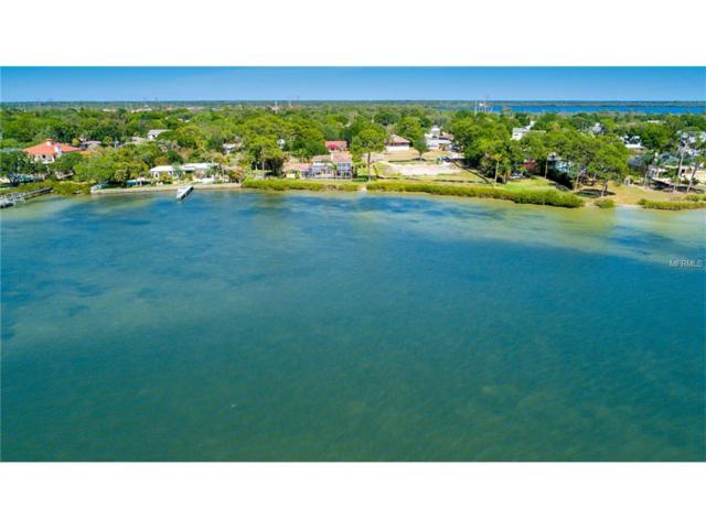 728 Shore Drive E, Oldsmar, FL 34677 (MLS #U7822024) :: Delgado Home Team at Keller Williams