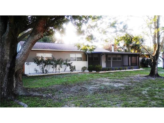 6612 15TH Street N, St Petersburg, FL 33702 (MLS #U7822028) :: Baird Realty Group