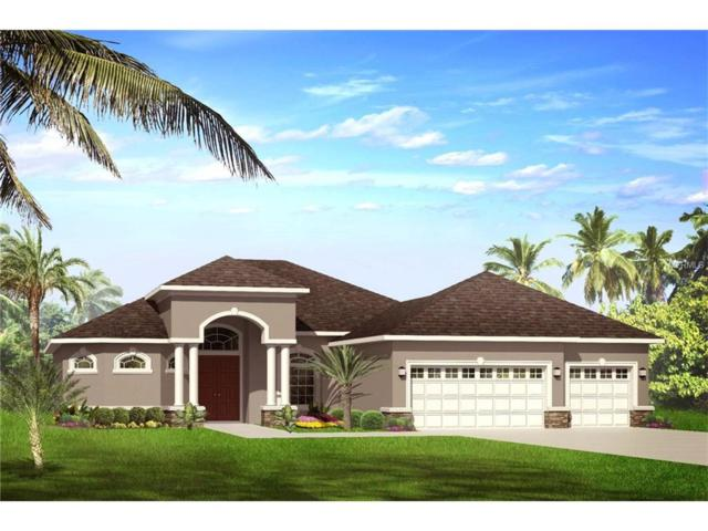 0 Ravens Brook Road, Wesley Chapel, FL 33544 (MLS #U7822442) :: The Duncan Duo & Associates