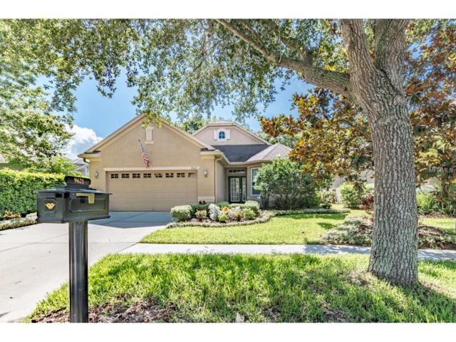 9621 Greenpointe Drive, Tampa, FL 33626 (MLS #U7823078) :: The Duncan Duo & Associates