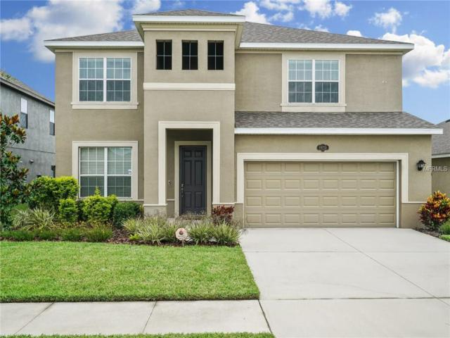 19231 Verdant Pasture Way, Tampa, FL 33647 (MLS #U7823190) :: Team Bohannon Keller Williams, Tampa Properties