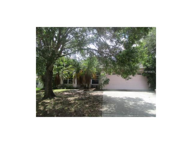 11123 Elmhurst Drive N, Pinellas Park, FL 33782 (MLS #U7823391) :: White Sands Realty Group