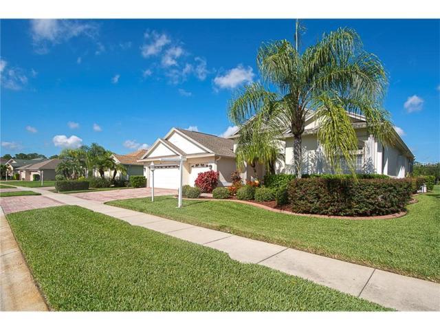 1351 Trimaran Place, Trinity, FL 34655 (MLS #U7823617) :: Griffin Group