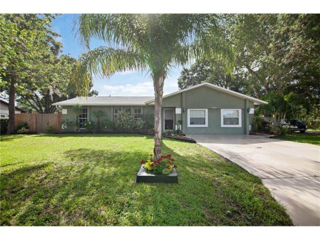 4204 99TH Avenue E, Parrish, FL 34219 (MLS #U7823711) :: Team Pepka