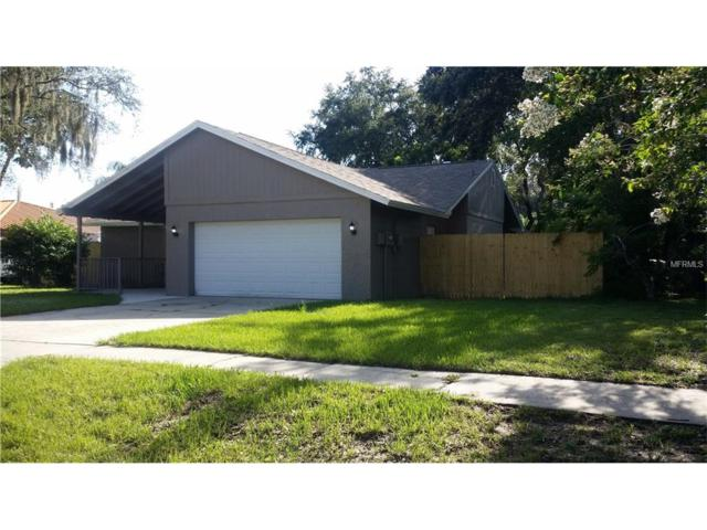 18416 Sterling Silver Circle, Lutz, FL 33549 (MLS #U7823844) :: Griffin Group