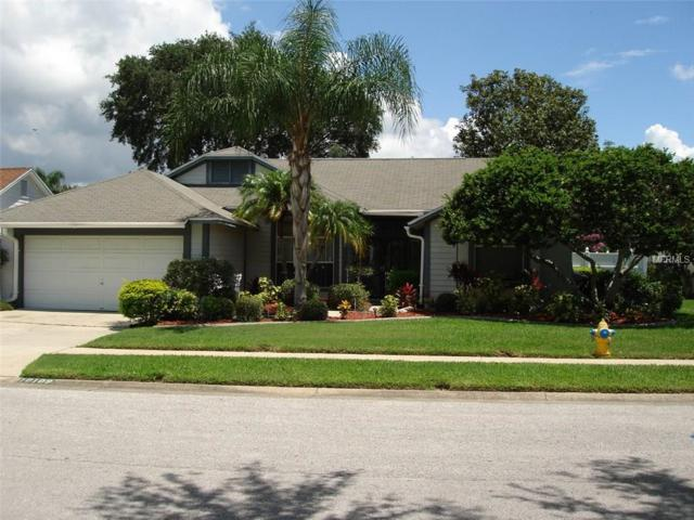 10109 Basin Street, New Port Richey, FL 34655 (MLS #U7823846) :: Griffin Group