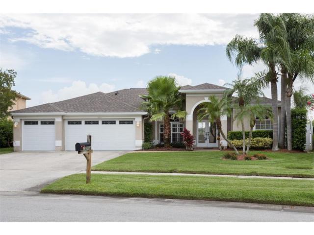 15910 Muirfield Drive, Odessa, FL 33556 (MLS #U7823853) :: RE/MAX Realtec Group