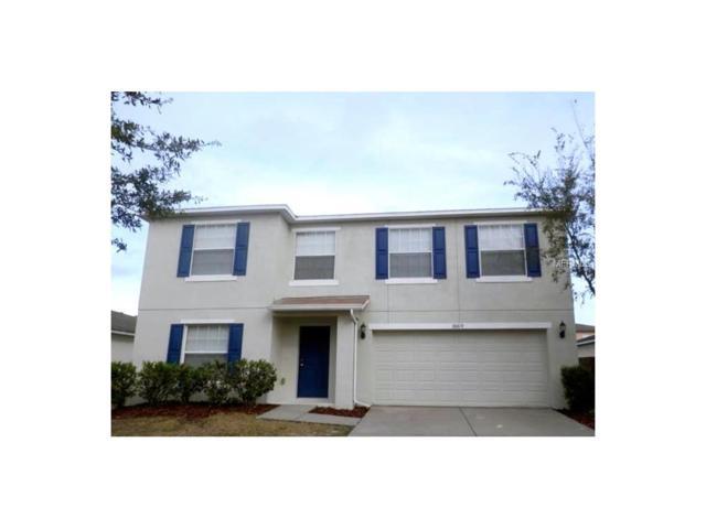 30819 Sonnet Glen Drive, Wesley Chapel, FL 33543 (MLS #U7823956) :: Arruda Family Real Estate Team