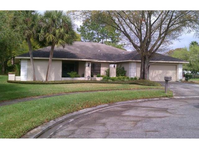 14308 Bellemont Place, Tampa, FL 33624 (MLS #U7824259) :: The Duncan Duo & Associates