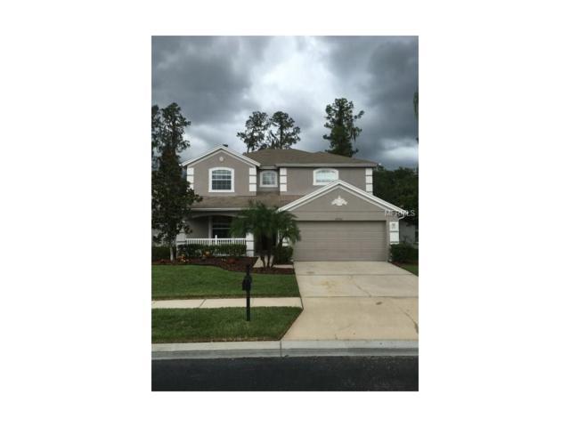 27303 Edenfield Drive, Wesley Chapel, FL 33544 (MLS #U7824746) :: The Duncan Duo & Associates