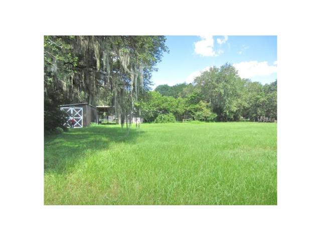 Boy Scout, Odessa, FL 33556 (MLS #U7825344) :: Team Bohannon Keller Williams, Tampa Properties
