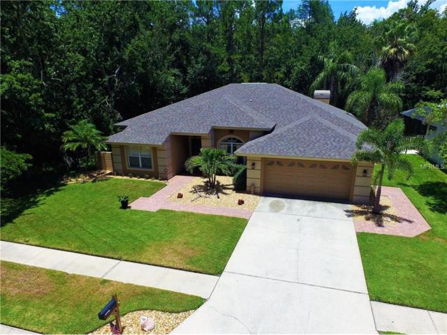 321 Waterford Circle E, Tarpon Springs, FL 34688 (MLS #U7825664) :: Revolution Real Estate