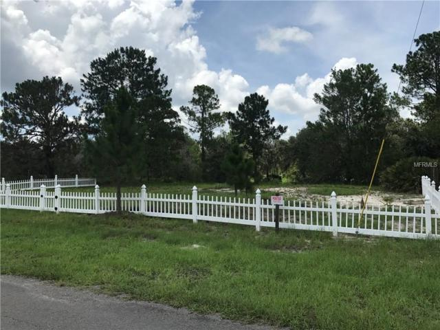 Lime Drive, Lake Wales, FL 33898 (MLS #U7825743) :: The Duncan Duo Team