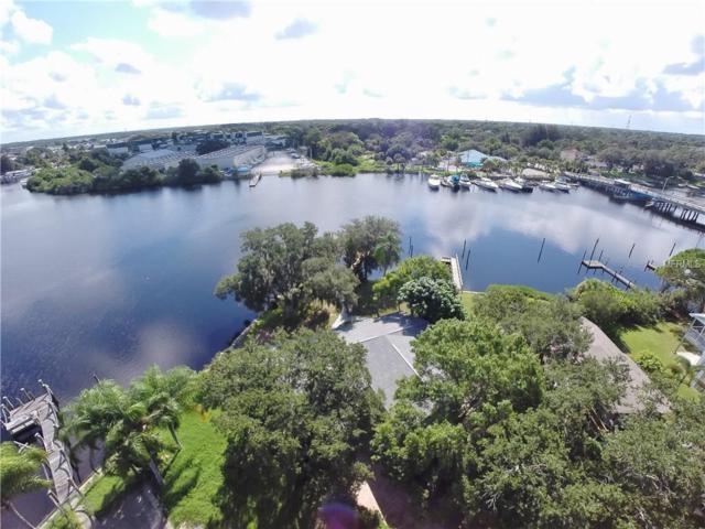 424 Doric Court, Tarpon Springs, FL 34689 (MLS #U7826336) :: Revolution Real Estate