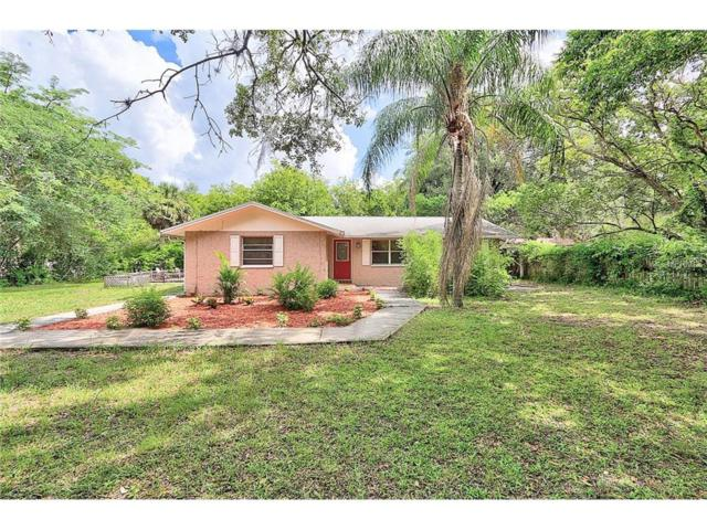 477 Pasaje Avenue, Tarpon Springs, FL 34689 (MLS #U7826346) :: Griffin Group