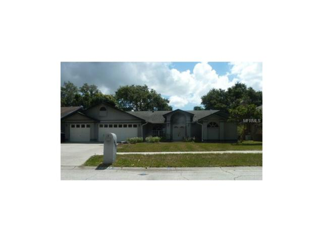 10233 Mulberry Way, Seminole, FL 33777 (MLS #U7826377) :: Revolution Real Estate