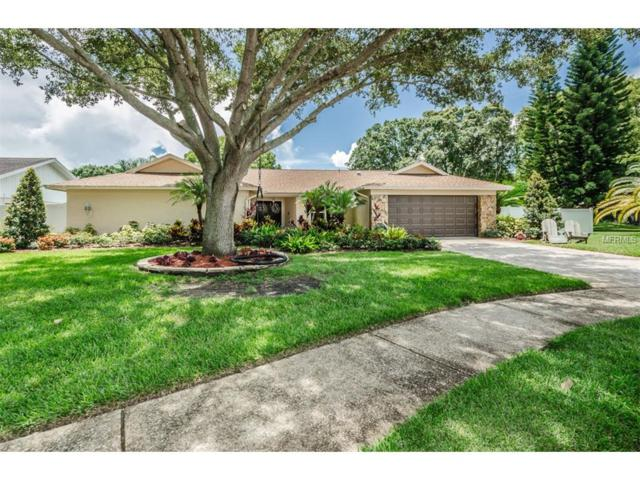 2673 Montague Court W, Clearwater, FL 33761 (MLS #U7826425) :: Delgado Home Team at Keller Williams