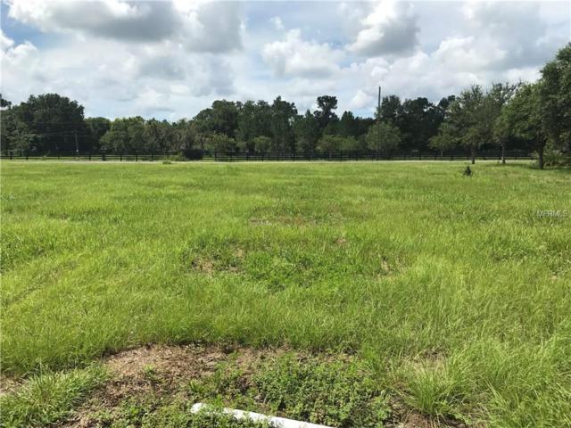 000 Popago Estates Lot 3 Lane, Dover, FL 33527 (MLS #U7826915) :: RealTeam Realty