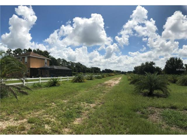 000 Popago Estates Lane, Dover, FL 33527 (MLS #U7826925) :: RealTeam Realty