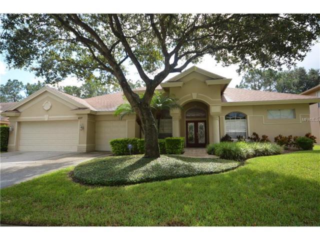 4117 Auston Way, Palm Harbor, FL 34685 (MLS #U7826972) :: Revolution Real Estate