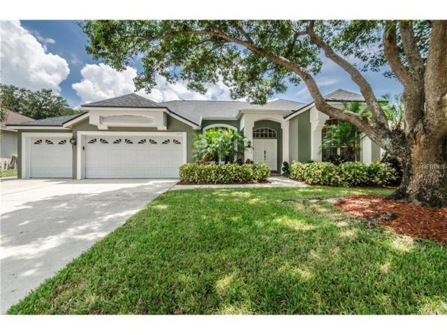 1836 Barn Owl Way, Palm Harbor, FL 34683 (MLS #U7826977) :: Revolution Real Estate